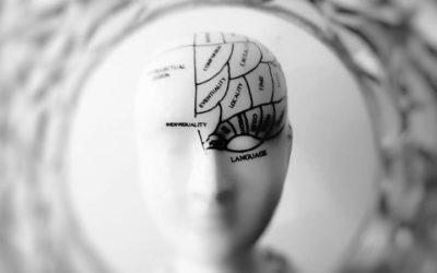 'Las marcas saben cómo lavarnos el cerebro'