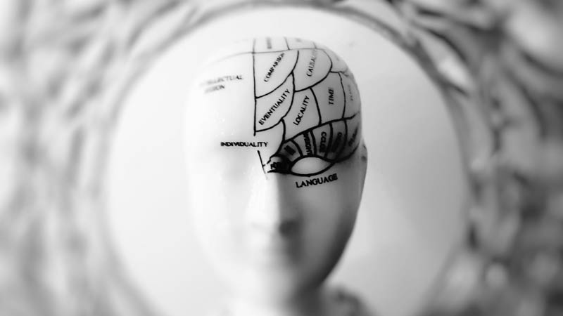Las marcas saben cómo lavarnos el cerebro